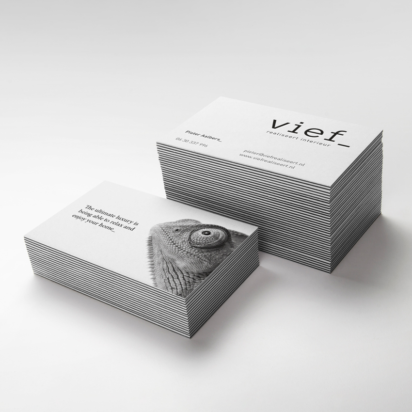 Vief_visitekaartjes